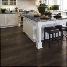 lifeproof vinyl flooring home depot fresh lifeproof take home sample dark oak luxury vinyl