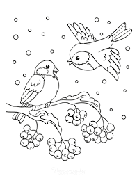 Watch birds with your baby for a walk, look at pictures in books. 80 Best Winter Coloring Pages Free Printable Downloads