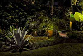 tropical outdoor lighting. with a strategically placed led path light between the kentia palm and giant alocasia we add subtle shadows to create more movement along ground tropical outdoor lighting o