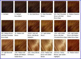 Medium Brown Hair Colour Chart Posts Related Light Caramel Brown Hair Color Chart Sophie