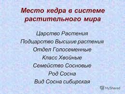 Презентация на тему МОУ Новоаганская общеобразовательная  4 Место