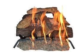 18 inch gas fireplace insert ed 18 inch gas fireplace insert