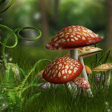 3d Mushroom Wallpaper posted by Ethan ...