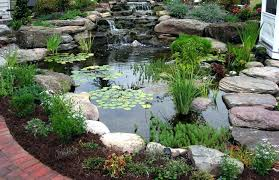 backyard pond fish pond fish pond backyard pond ideas above ground pond outdoor fish pond winter