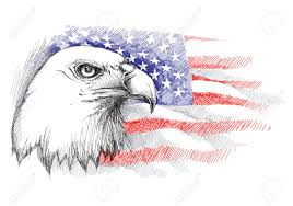 bald eagle template sketch of bald eagle head on the background with american flag