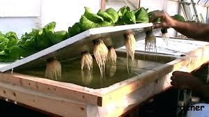 how to build a hydroponic garden. amazing hydroponic gardening systems how to make garden a at build