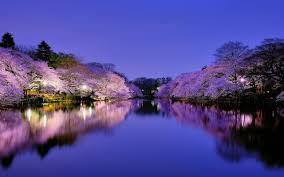 Best 20 Japanese Desktop Backgrounds On Hipwallpaper Cute