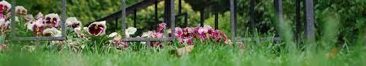 best mix garden supplies pty ltd homepage