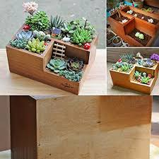 terrarium furniture. top selected products and reviews terrarium furniture