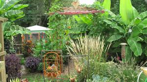 Small Picture Bills tropical garden in Ohio Fine Gardening