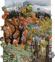 Starforest Quilts - Burnsville Town Center Quilt - Making of &  Adamdwight.com