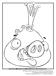 Small Picture angry bird epic coloring pages Angry birds coloring page King