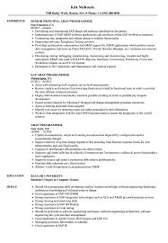 Excellent Sap Apo Abap Developer Resume Gallery Entry Level