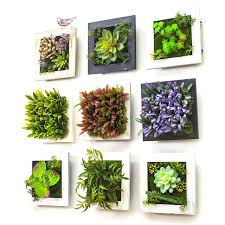 dried plant wall decor creative succulent plants imitation wood photo frame decoration artificial flowers home diy plant wall decor