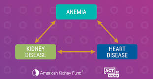 Anemia Chart Anemia Kidney Disease And Your Heart Its Time To Have The