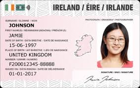Irish Card Id Documents - Best Novelty