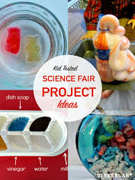 science fair project ideas tinkerlab science fair project ideas that will win 1st place