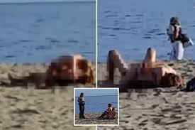 incredible shaped office desk chairandsofaclub. Beach. Plain Beach Brazen Moment Beachgoers Are Caught Having Sex On Public In California Incredible Shaped Office Desk Chairandsofaclub U