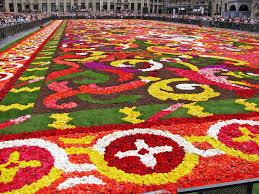carpet world. flowercarpet211 carpet world s