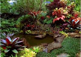 Small Picture Tropical Backyard Landscaping Ideas Architecture Decorating