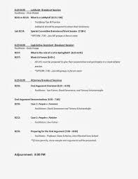 Sample Political Agenda Beautiful Sample Political Agenda Ideas Best Resume Examples By 11