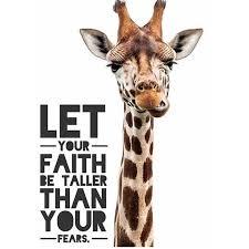 Giraffe Quotes Extraordinary Faith Taller Wordspiration