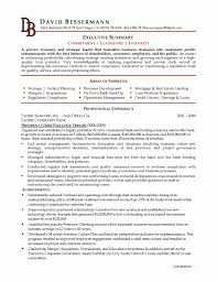 Resume Summary Statement Example Luxury Summary Resume Examples