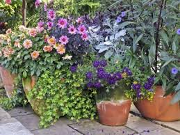 container garden. Container Garden Arrangements: Gardening Ideas And More T