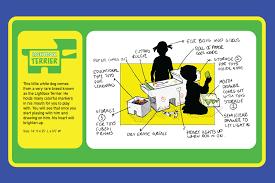 Light Box Terrier For Sale Lightbox Terrier Melissa Rivera