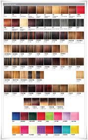Expression Braiding Hair Color Chart Lajoshrich Com