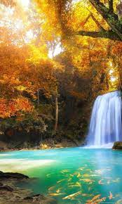 Hd Nature Wallpapers, Download Hd ...