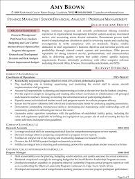 Sample Resume Financial Analyst