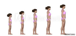 Female Growth Chart Age 5 To Adult Buy This Stock
