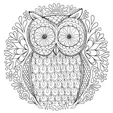 secret garden an inky trere hunt and colouring book owl coloring book owl pattern 1535 1535 transp png free owl flower art