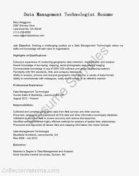 ... Gis Technician Resume Data Management Resume Data Architect Resume 20  Beautiful Sample ...