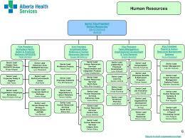 Whs Organization Chart Organizational Structure Pdf Free Download