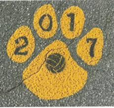 parking lot paw with sports symbol