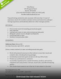 Resume Description Examples Sales Associate Resume Sample Complete Guide [ 100 Examples 41