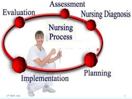 nursing essay on nursing process 17th 2014 2 3 nursing process