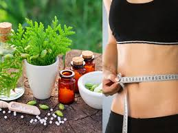 Naturopathy Diet Chart For Obesity Naturopathy For Weight Loss Does It Work Times Of India