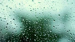 Spring Rain Wallpaper Free