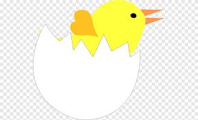 Ribuan gambar baru berkualitas tinggi ditambahkan setiap hari. Kulit Telur Pecah Sudut Daun Png Pngegg