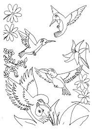 Small Picture Hummingbird coloring pages tribal ColoringStar