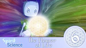 spirit science 6 the flower of life