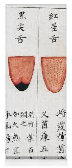 Chinese Tongue Diagnosis Chart 1341 Yoga Mat