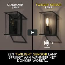Lucide Led Bulb Twilight Sensor Filament Lamp Buiten ø 95 Cm Led E27 1x4w 2200k Amber 490320462 Nl