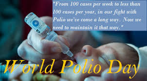 world polio day essay speech quotes status history story  world polio day essay
