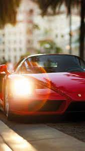 Ferrari Enzo Wallpapers Red Gallery ...