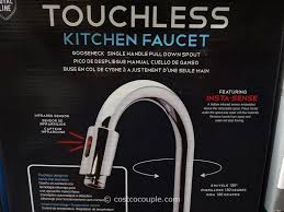 Moen Kitchen Faucet Hands Free Kitchen Outstanding Costco Kitchen Faucet Ideas Water Ridge Within