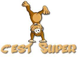 """Résultat de recherche d'images pour """"singe.gif"""""""